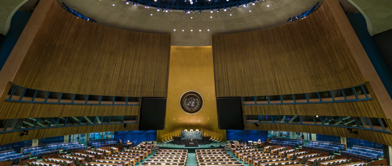 General Assembly of the United Nations in New York